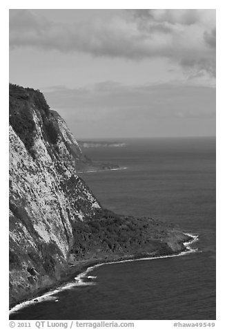 Cliffs near Waipio Valley. Big Island, Hawaii, USA (black and white)