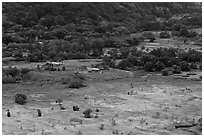 Valley farmlands from above, Waipio Valley. Big Island, Hawaii, USA ( black and white)