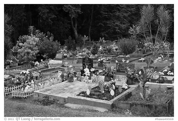 Tomb with easter eggs and rabbits, Hilo. Big Island, Hawaii, USA (black and white)
