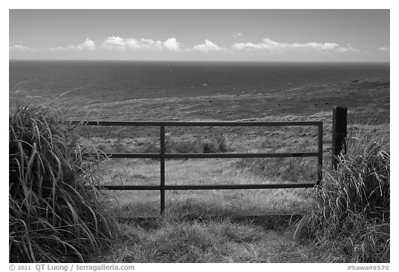 Gate, field, and Ocean. Big Island, Hawaii, USA (black and white)