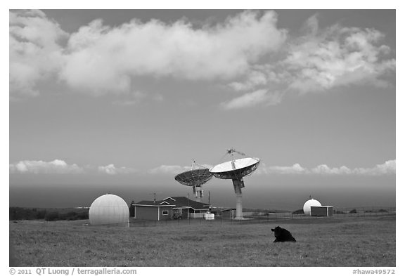 South Point satellite station. Big Island, Hawaii, USA (black and white)