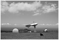 South Point satellite station. Big Island, Hawaii, USA ( black and white)