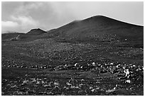 Cinder cones. Mauna Kea, Big Island, Hawaii, USA ( black and white)