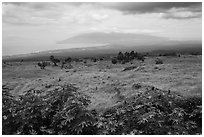 West Maui seen from highlands. Maui, Hawaii, USA (black and white)