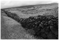 Long lava rock wall and pastures. Maui, Hawaii, USA (black and white)