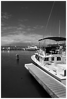 Yachts in harbor. Lahaina, Maui, Hawaii, USA (black and white)