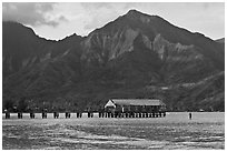 Hanalei Pier, mountains, and surfer. Kauai island, Hawaii, USA (black and white)