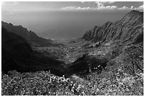 Kalalau Valley and Ocean. Kauai island, Hawaii, USA ( black and white)