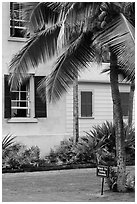 Hulihee Palace detail with coconut tree, Kailua-Kona. Hawaii, USA (black and white)