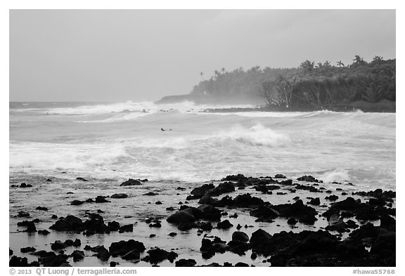 Seascape with strong surf and surfer, Pohoiki. Big Island, Hawaii, USA (black and white)