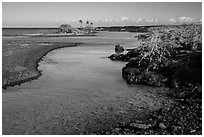 Clear water in channel, Kiholo Bay. Big Island, Hawaii, USA ( black and white)
