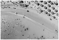 Aerial view of sun umbrellas and beachgoers looking down, Kuhio Beach. Waikiki, Honolulu, Oahu island, Hawaii, USA ( black and white)