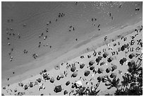 Aerial view of palm trees and beach with umbrellas looking down, Waikiki. Waikiki, Honolulu, Oahu island, Hawaii, USA ( black and white)