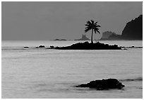 Lone coconut tree on a islet in Leone Bay, dusk. Tutuila, American Samoa ( black and white)