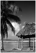 Beach fale with dog near Amouli. Tutuila, American Samoa (black and white)