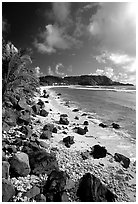 Coast and Cape Mataula. Tutuila, American Samoa (black and white)