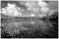 Pala quicksand lake. Aunuu Island, American Samoa ( black and white)