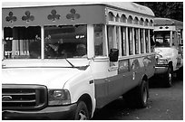 Colorful aiga busses, Pago Pago. Pago Pago, Tutuila, American Samoa ( black and white)