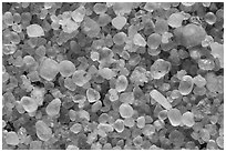 Pictures of NP Sand Grains