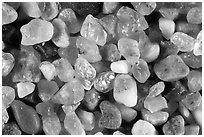 Pictures of California Sand Grains