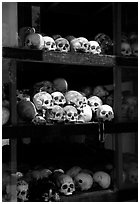 Skulls of executed prisoners, Choeng Ek Killing Fields memorial. Phnom Penh, Cambodia (black and white)