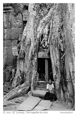 Girl sits at the base of huge bayan tree encroaching on ruins in Ta Prom. Angkor, Cambodia (black and white)
