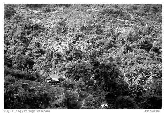 Hillside village in luxuriant jungle. Mekong river, Laos (black and white)