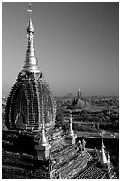 Gilded temples seen from Dhammayazika. Bagan, Myanmar ( black and white)