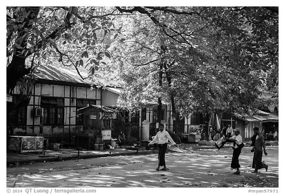Leafy street. Yangon, Myanmar (black and white)