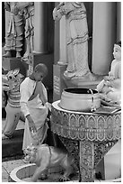 Nun pouring water at planetary post. Yangon, Myanmar ( black and white)