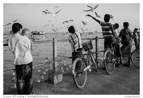 Yangon River pier with seagulls fed by visitors. Yangon, Myanmar (black and white)