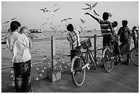Yangon River pier with seagulls fed by visitors. Yangon, Myanmar ( black and white)