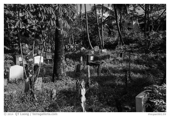 Tombs and vegetation in Muslim Cemetery. Yangon, Myanmar (black and white)