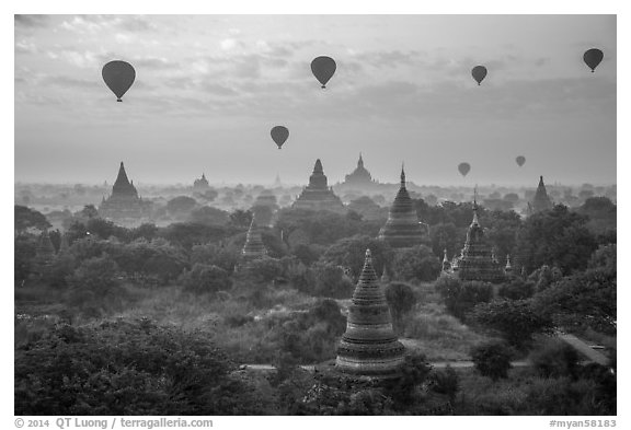 Hot air ballons above temples at sunrise. Bagan, Myanmar (black and white)