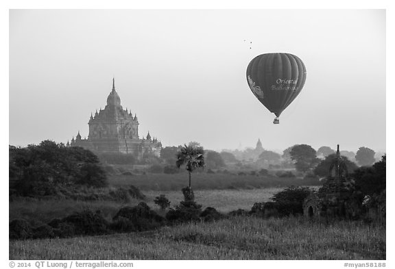 Hot air ballon and Thatbyinnyu temple. Bagan, Myanmar (black and white)
