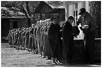 Buddhist novices lining up to receive rice for lunch, Nyaung U. Bagan, Myanmar ( black and white)