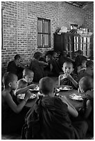 Young Buddhist monks in dining room. Bagan, Myanmar ( black and white)