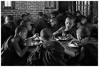 Novices eat lunch, last meal of the day. Bagan, Myanmar ( black and white)