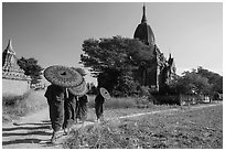 Young Buddhist monks holding red sun umbrellas walk towards temple. Bagan, Myanmar ( black and white)