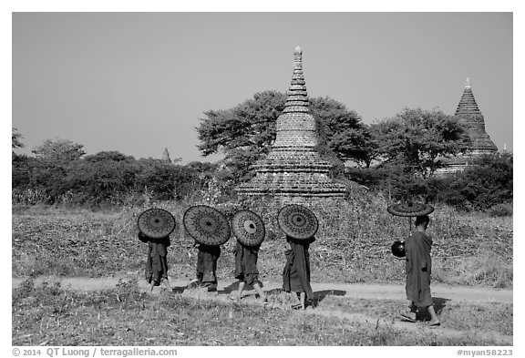 Buddhist Novices with red sun umbrellas on path near old stupas. Bagan, Myanmar (black and white)