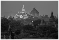 Temples at dawn, including Ananda and Thatbyinnyu. Bagan, Myanmar ( black and white)