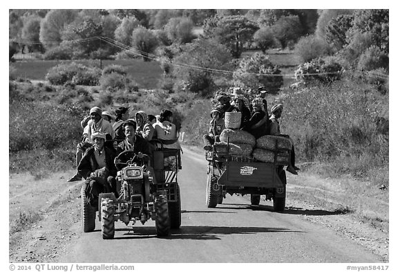 Tractors loaded with passengers. Shan state, Myanmar (black and white)