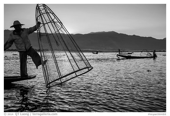 Intha fisherman standing on boat stern to lift net basket. Inle Lake, Myanmar (black and white)