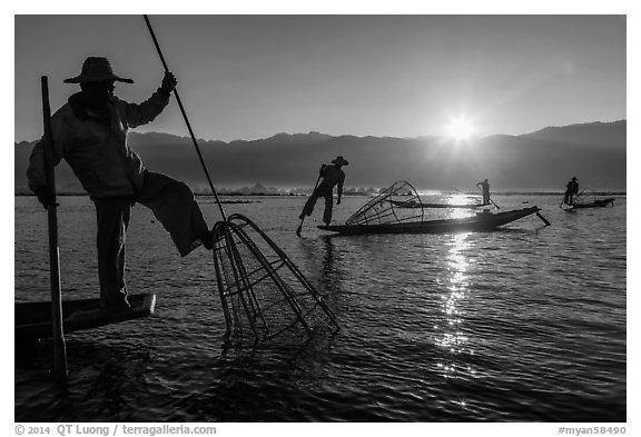 Intha fisherman using spear sticking through the top of basket to expose fish. Inle Lake, Myanmar (black and white)