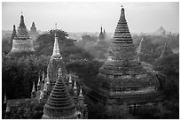 Dense array of ancient temples. Bagan, Myanmar ( black and white)