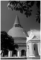 Phra Pathom Chedi, the tallest buddhist monument in the world. Nakkhon Pathom, Thailand (black and white)