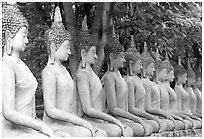 Row of Buddha images in Wat Chai Mongkon, reverently swathed in cloth. Ayuthaya, Thailand ( black and white)