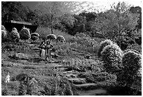 Children in traditinal hmong dress in flower garden. Chiang Mai, Thailand (black and white)