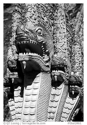 Nagas at Wat Chedi Luang. Chiang Mai, Thailand (black and white)