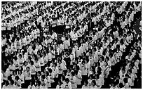 Rows of uniformed school girls lined up during prayer. Chiang Rai, Thailand ( black and white)